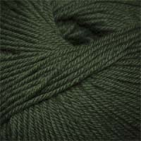 Cascade Yarns 220 Superwash 801 Army Green