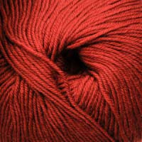 Cascade Yarns 220 Superwash 823 Burnt Orange