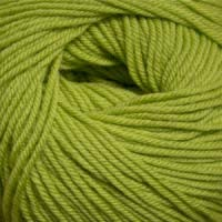 Cascade Yarns 220 Superwash 887 Wasabi