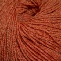Cascade Yarns 220 Superwash 907 Tangerine Heather
