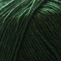 Cascade Yarns 220 Superwash 1918 Shire
