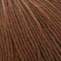 Cascade Yarns 220 Superwash 1920 Pumpkin Spice